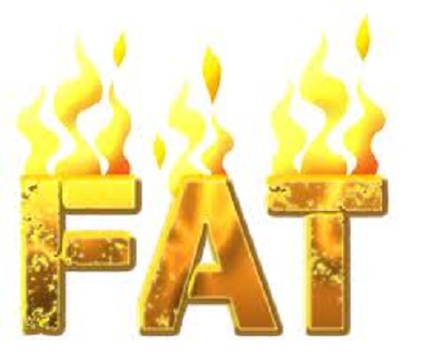 What is the best way to lose fat?